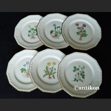 Rosenthal Maria z 1938 r.  6 ręcznie malowanych talerzyków deserowych