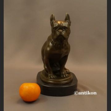 Figurka z brązu pies buldog francuski piękny