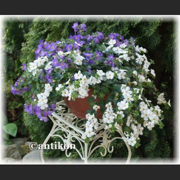 Biały kwietnik prowansalski metalowy wysoki stołek