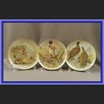 Limoges talerze kolekcjonerskie Ptaki Świata 12 sztuk