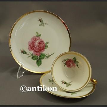 Filiżanka kolekcjonerska bawarska porcelana Róża trio